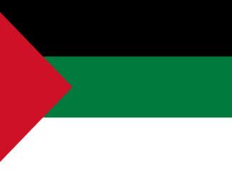 Badeira Palestina A Nova Peneira