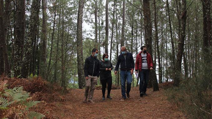 O Concello de Nigrán inicia a tramitación para rexenerar o Monte de Santa Cruz, en San Pedro