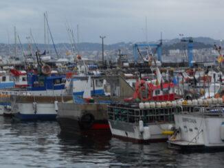 Imos falar de barcos artigo de opinión Pedro M Cortegoso A Nova Peneira