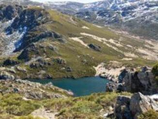 """Alertan que se poñen en perigo os """"Teitos de Galicia"""""""